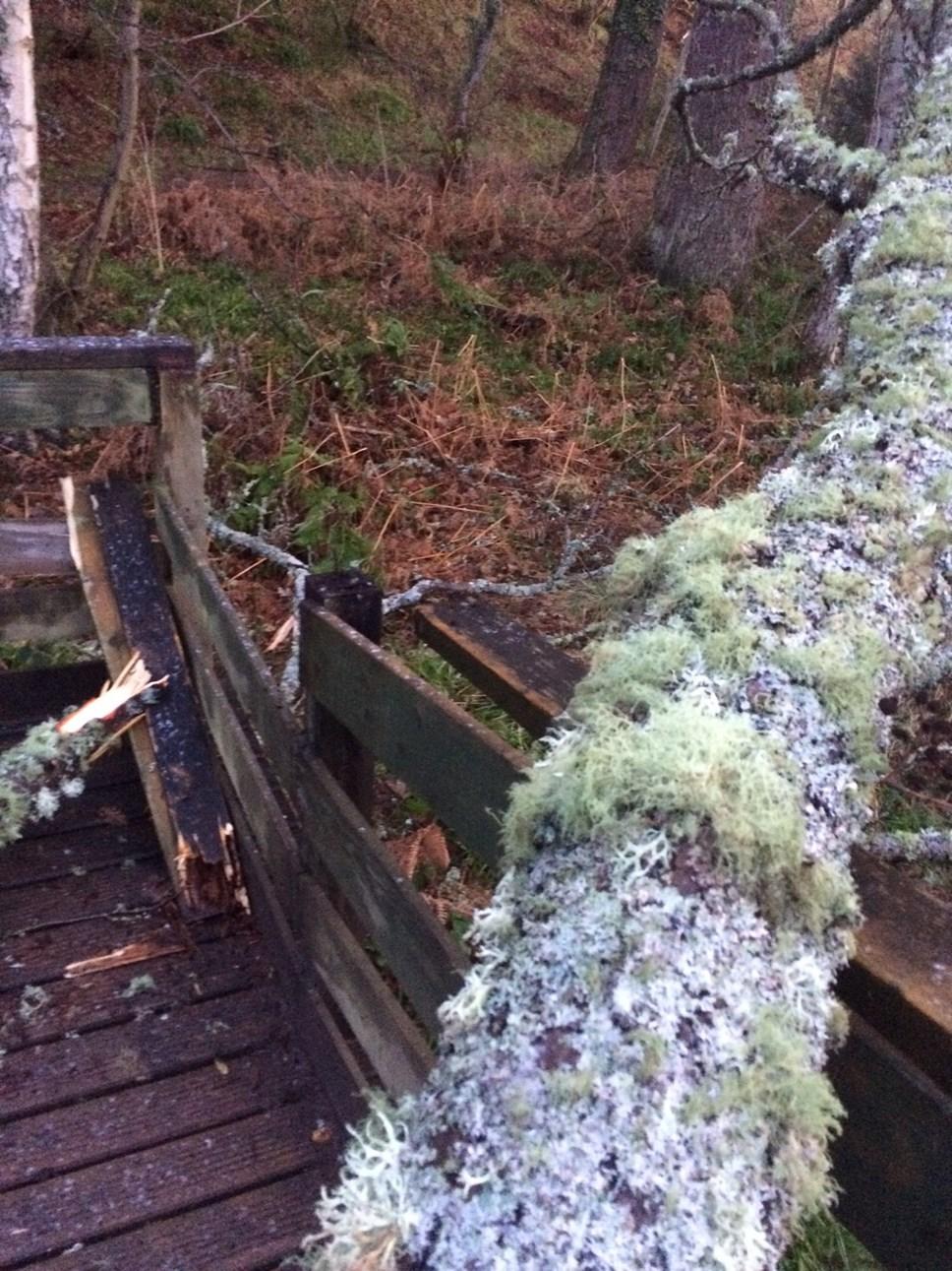 Forres footbridge damaged by storm Ciara: sanquhar bridge