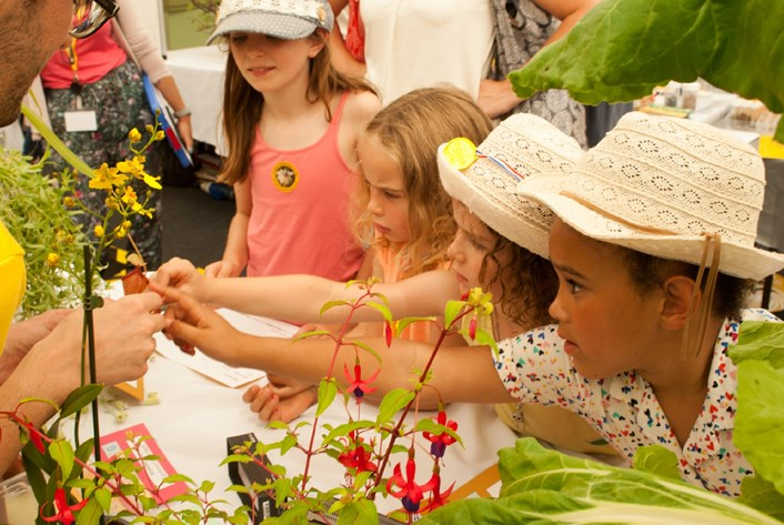 Honey, I'm taking the kids to London: a long family weekend in the capital: © Royal Botanic Gardens, Kew