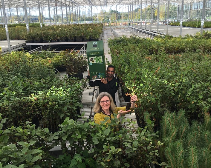 Seed Collection Launch - Arium Greenhouse
