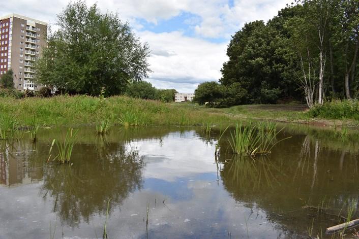 New ponds-2