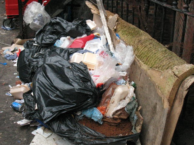 Big fine not poultry matter for takeaway boss who dumped rubbish: dixys6.jpg