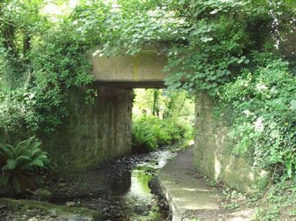 Railway encroached by vegetation on Amlwch