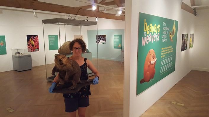 Exhibition explores animal kingdom's grand designs and miniature marvels: 20180705-101606.jpg
