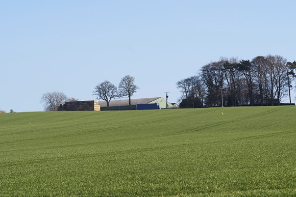 All parties need to act quickly for Amnesty on Tenant's Improvements: Black Isle Farm View 005