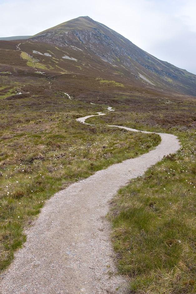 Footpath at Ben Wyvis NNR. ©Lorne Gill-NatureScot