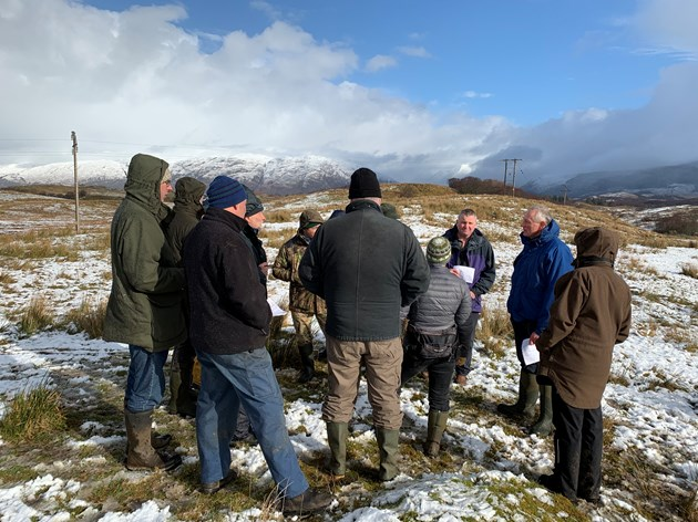 Innovative farming pilot could replace traditional EU payment schemes: Farmers in Argyll try a scorecard which rewards species composition and structure of grassland - Free use - Credit NatureScot-2