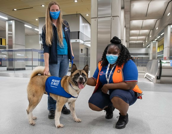 TfL Image - CSS Priscilla Smartt with canine VIP visitors to Battersea