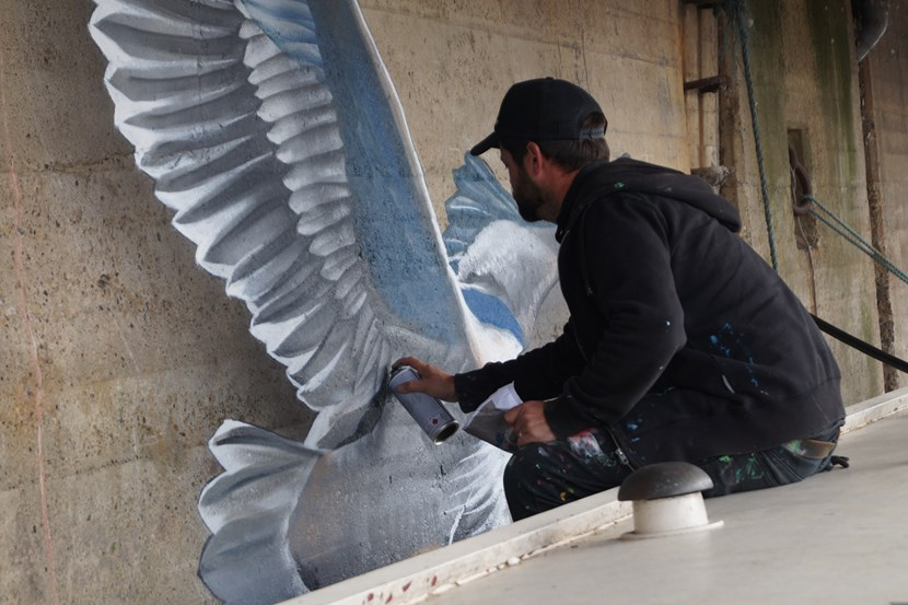Waterfront fund takes flight with launch of first artworks: dsc01115-811664.jpg