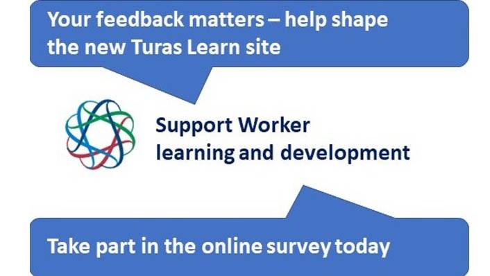 Turas Learn survey (image)
