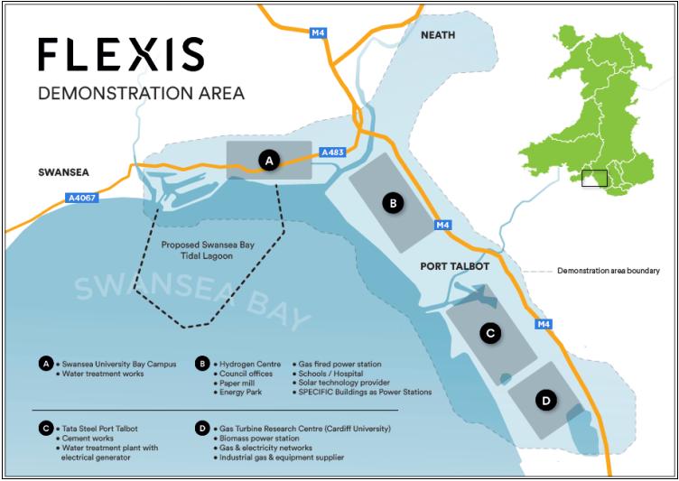 Flexis-2