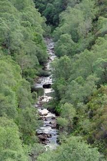 Abhainn Lusa, River Lusa near Kylerhea, Isle of Skye. Credit Lorne Gill-NatureScot