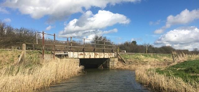 Creek River Bridge