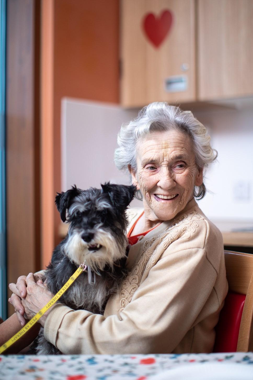 Pet Therapy: JGO MerseyCare 151119 27