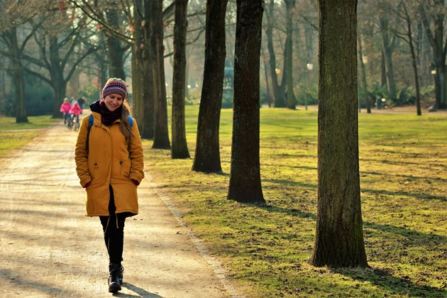 Walk in park - Image by Liblicas from Pixabay
