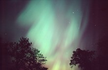 Aurora borealis ©Lorne Gill SNH