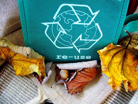 Canva - Single Reusable Bag