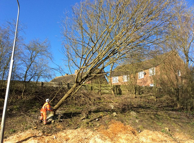 Residents between Rugby and Coventry invited to find out more about upcoming vegetation work: Deveg2