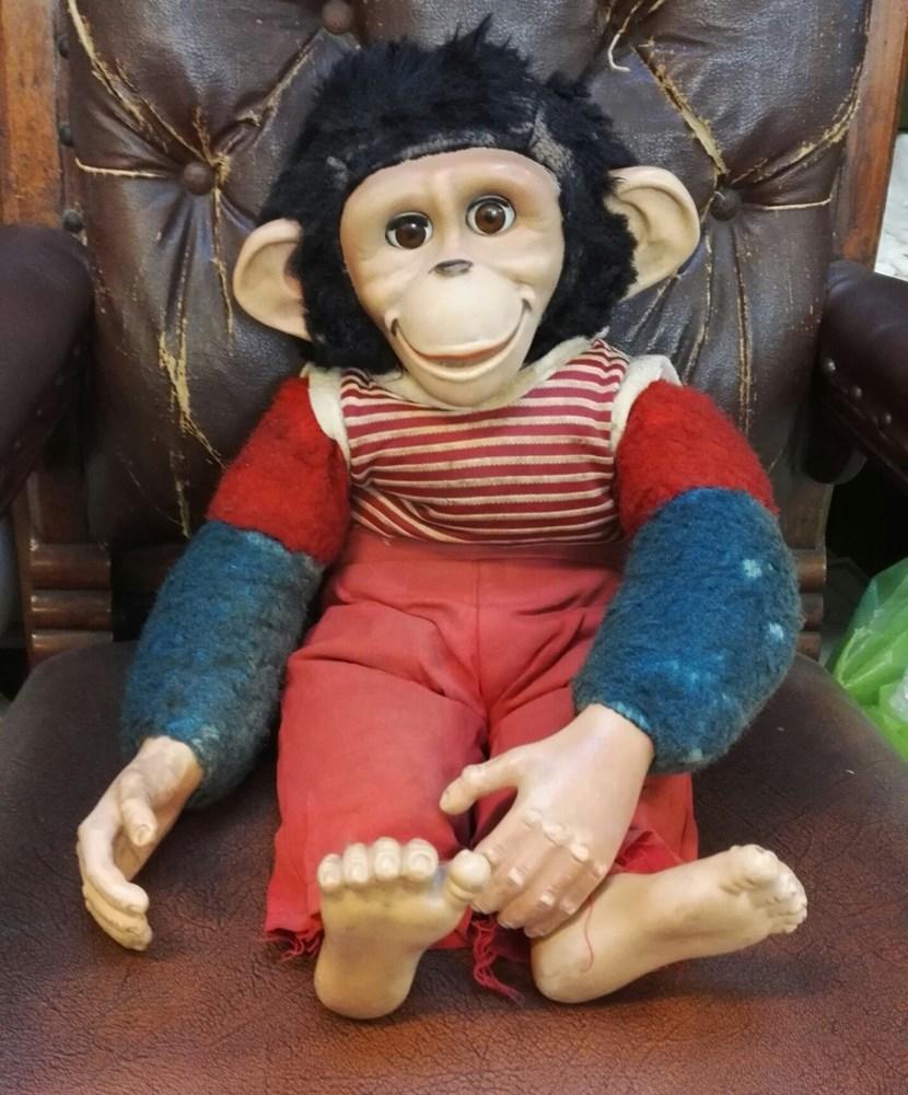 Object of the week- Joey the monkey: joey-664655.jpeg