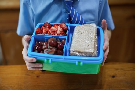 Getty Images - 2018 19 - Education - healthy lunchbox - 860582418