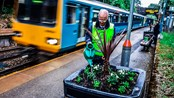 Cardiff station adopters support call for more volunteers across the railway: Tony from Llanishen Station 1
