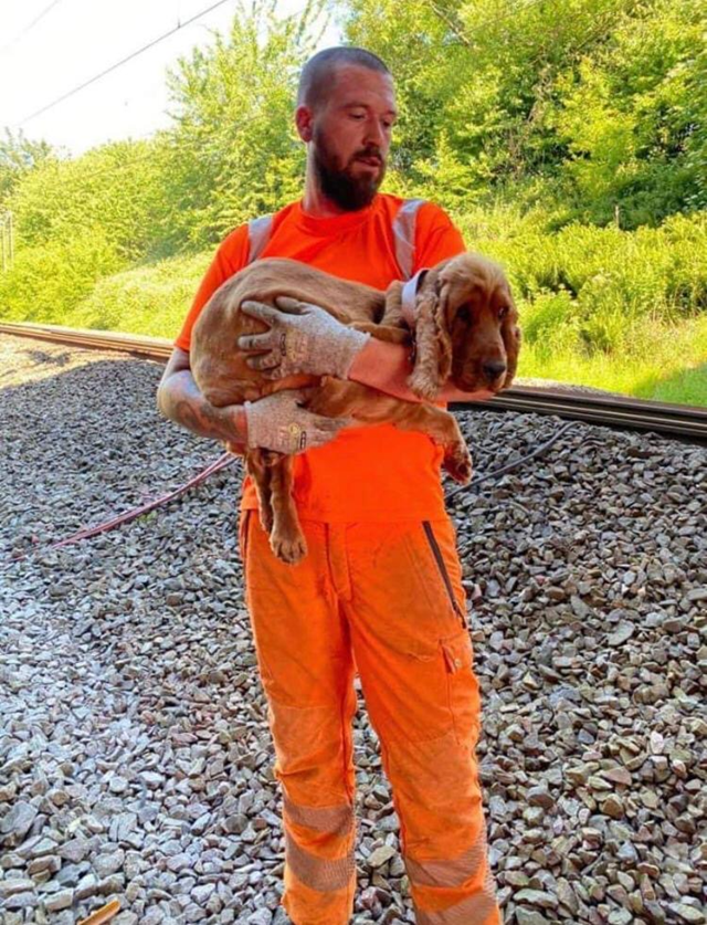 Rover in Eric Formby's arms after being rescued
