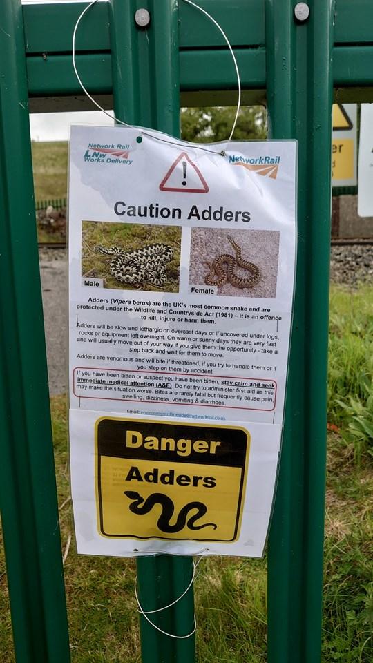 Adder staff caution sign at Shap cutting