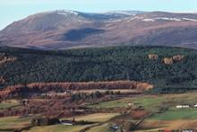 Ben Wyvis landscape: Ben Wyvis landscape - available for one-off use. (C) SNH