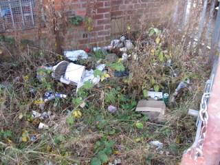 Deepdale clean-up_2