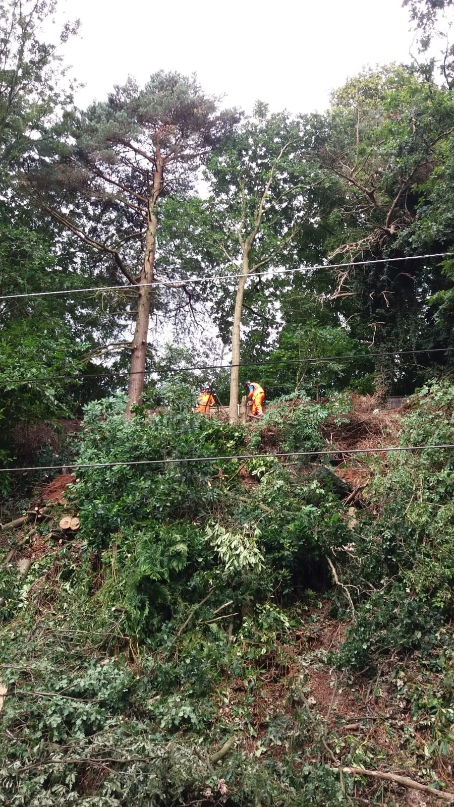 Cross City line south to remain closed while trees and embankment are made safe: Cross City line embankment and trees