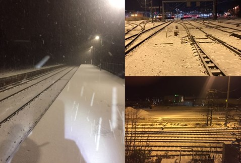 Snow in Norfolk Feb26-27