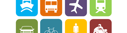 Forest-Transport-Study  Focus