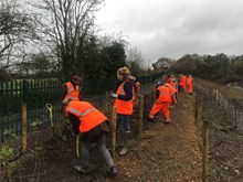 Members of the Hadley Wood community planting trees at Hadley Wood station
