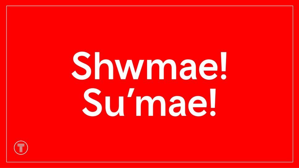 Shwmae beginning frame