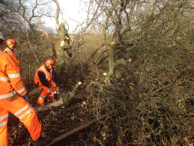 Carpenders Park residents invited to learn more about February railway vegetation: images of tree on line and removal at Warkworth