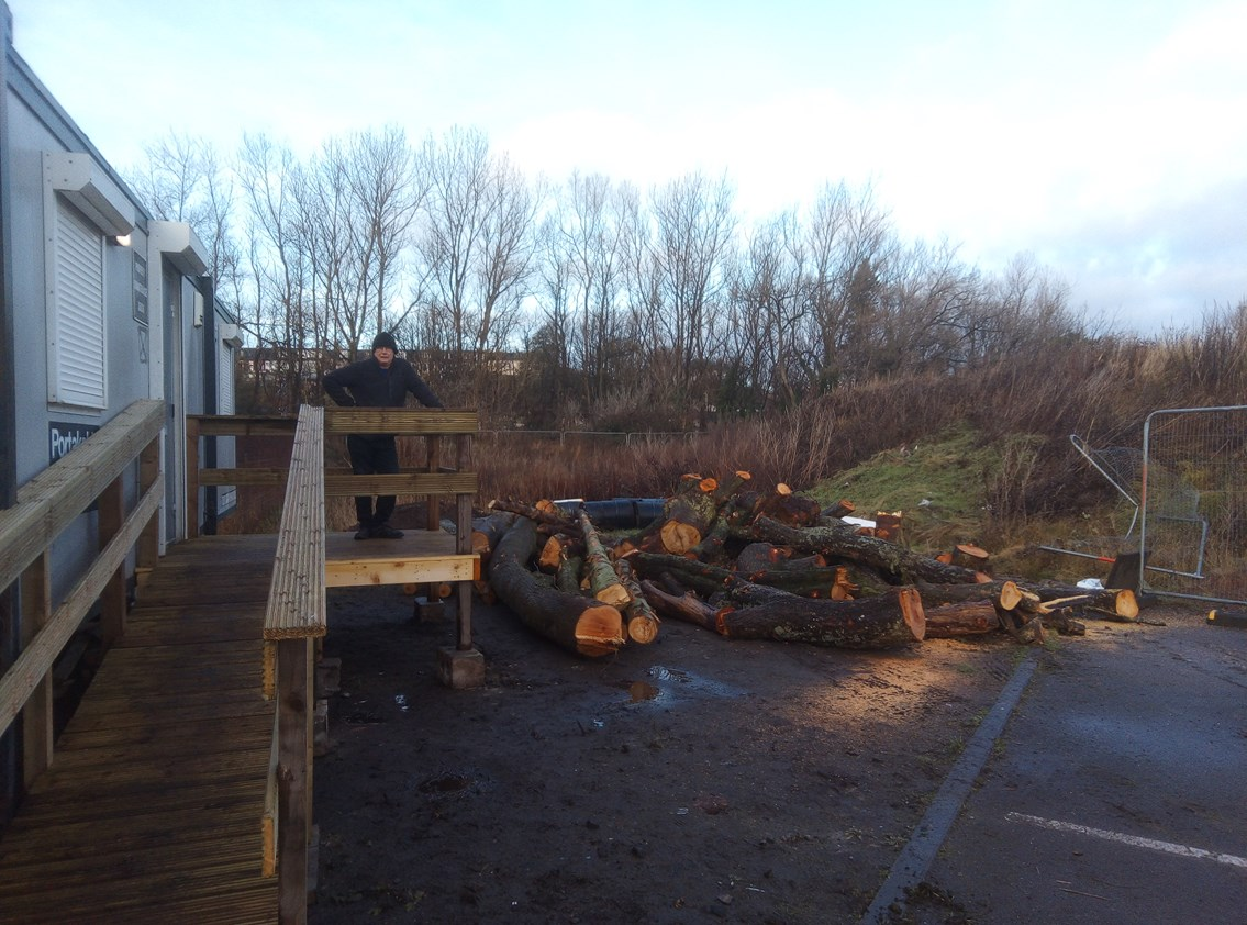 Project cops for a Shed load of logs: Bayview mens shed