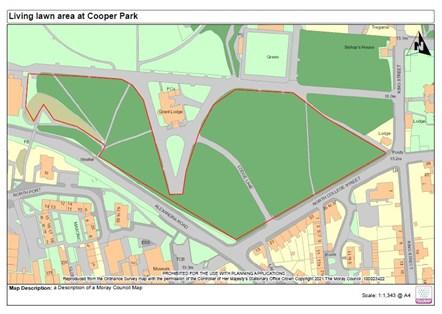 Living Lawn area Cooper Park
