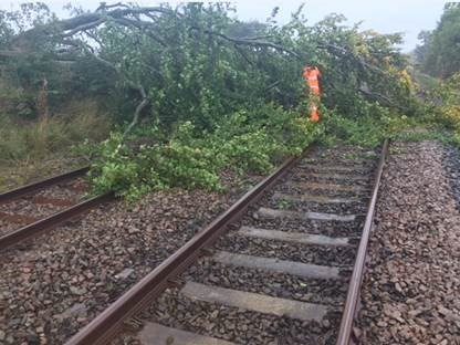 Storm Ciara: Severe disruption expected across South - please check before you travel: Example of a tree on the line