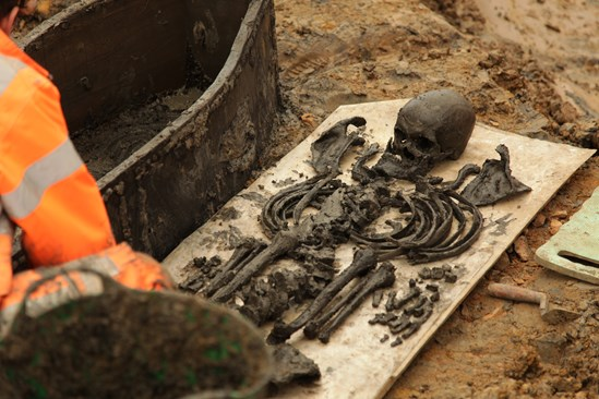 Image of a skeleton excavated at St James's Gardens September 2020: Credit: Lion Studios (Euston, archaeology, skeleton, Britains biggest dig)