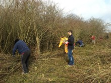 Network Rail volunteers helping create a new habitat for the Duke of Burgundy butterfly