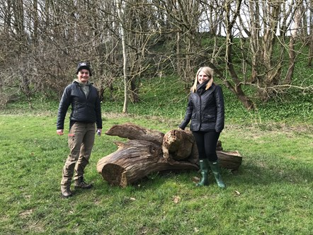 National Forest programme celebrated in North Wales woodland: Coed y Felin