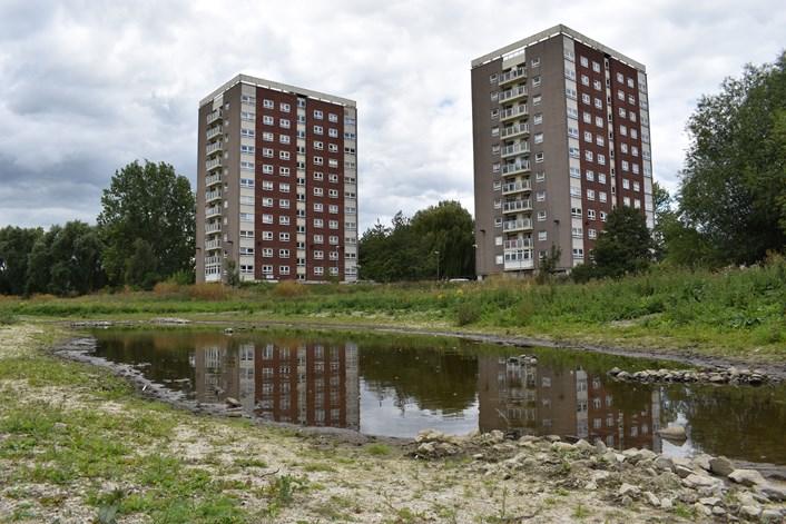 2. New ponds