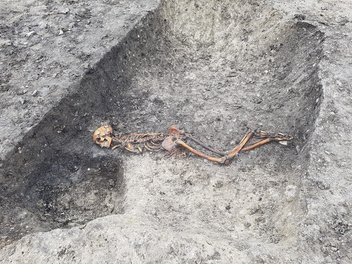 HS2 uncovers Iron Age murder victim and timber Stonehenge-style formation during excavations at Wellwick Farm, Bucks: Iron Age Skeleton July 2020