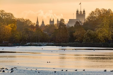 Downton Fever Hits London!: 2016 11 19 Hyde Park-57