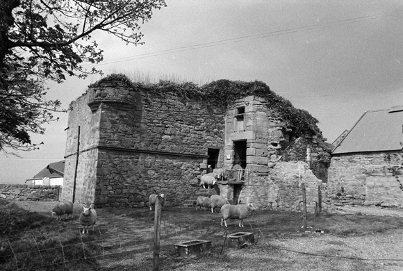 HIGHLANDS ARCHIVE IMAGES: Members of the public are asked to help identify Scotland's archives: SC 1954603 - Cadboll Castle, Fearn Parish, Highlands - 1981