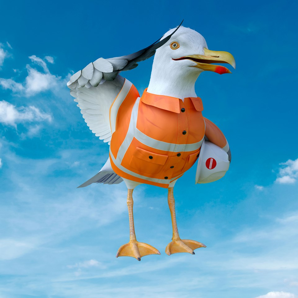 Engineering work moved to help Seagulls fans reach FA Cup semi-final at Wembley: Sammy Salute 06 lr