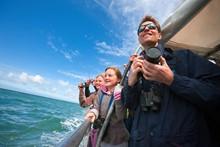 Searching for dolphins near Aberystwyth
