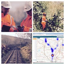 Railway tree census singles-out problem trees to reduce costs and improve safety