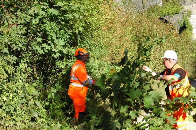Public information event to discuss vegetation management work in Lancaster: Network Rail engineers clearing overgrown vegetation