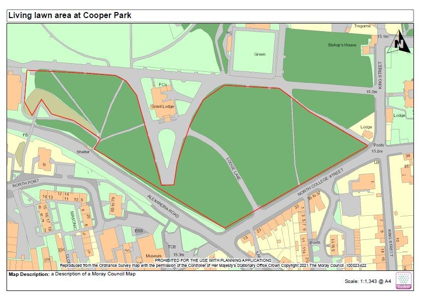 Living Lawn area Cooper Park: Map showing the area of Cooper Park being used for the Living Lawn trial.