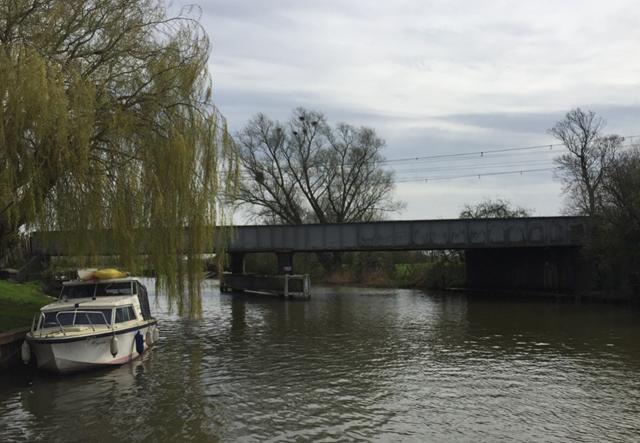 Common Muckhill Bridge Ely